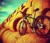 My Bike bike photo