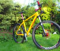Mellow Yellow bike photo