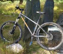 45650b Raw bike photo