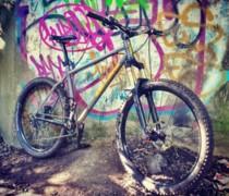 The Raw One bike photo