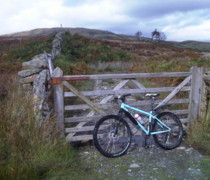 Bluey bike photo