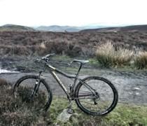 Bert bike photo
