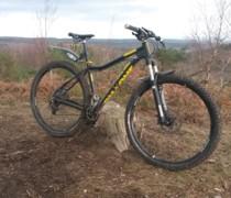 Goldie bike photo