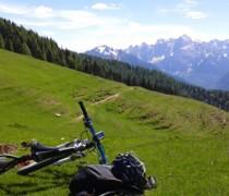 Black Horse bike photo
