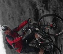 Pedal Damn It bike photo