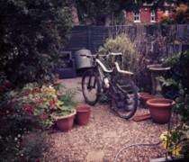 Wicked bike photo