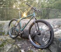 Teal Is Real (Inbred 29er) bike photo