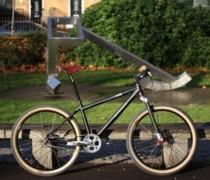 Scandalous (26er) bike photo