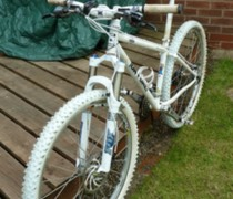 A Pain To Clean bike photo