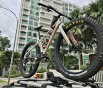 Fat Beeyatch bike photo