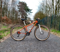 Steel Pig bike photo