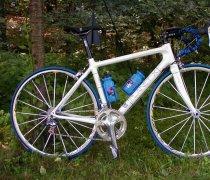 Odie II bike photo