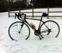 Ridley Orion bike photo