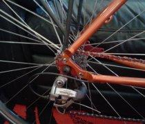 Fronkenshteens B'ride bike photo