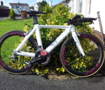 McCanncellara bike photo