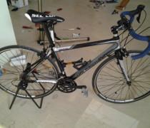 My Lovely Stelvio bike photo