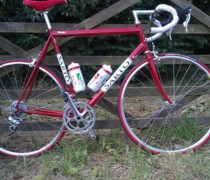 Sarto Rovigo Italia bike photo