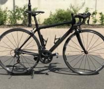 Black Stallion bike photo
