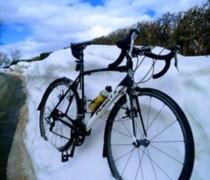 Bikey Mcbikeface bike photo