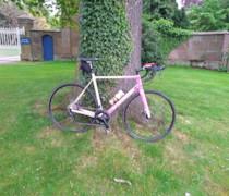 Lady P bike photo
