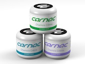 Carnac Tea Tree and Arnica Chamois Creme
