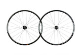 "FSA NS 29"" 6 Bolt Wheelset"